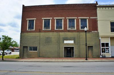 Massac County Commercial For Sale: 305 Ferry Street