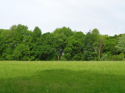 Simpson IL Residential Lots & Land For Sale: $50,000