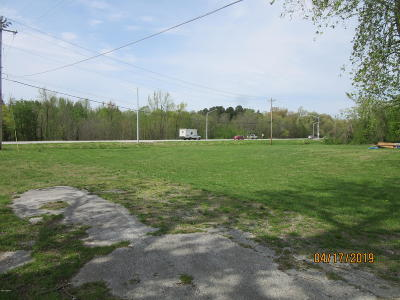 Massac County Residential Lots & Land For Sale: 11 Faughn Lane
