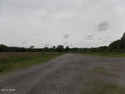 Saline County Commercial For Sale: Us 45 North