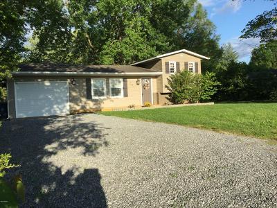 Desoto IL Single Family Home For Sale: $95,500