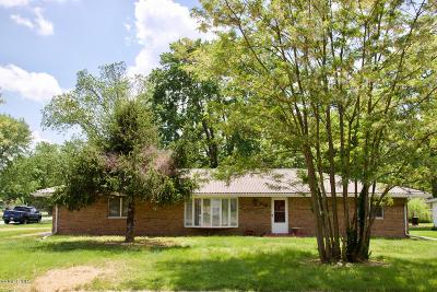Desoto IL Single Family Home For Sale: $89,999