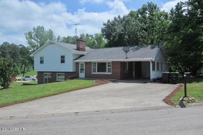 Carbondale Single Family Home For Sale: 1345 Vercliff Drive