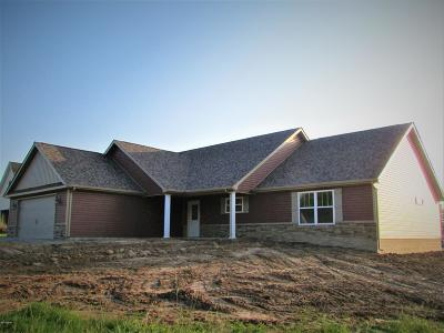 Marion IL Single Family Home For Sale: $210,000