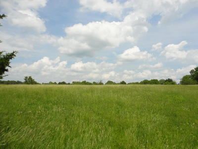 Johnson County Residential Lots & Land For Sale: N Route 37
