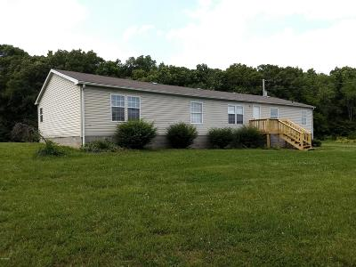 Hamilton County Single Family Home Active Contingent: 11631 County Road 1300 N