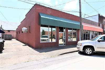 Metropolis Commercial For Sale: 204 W 7th Street