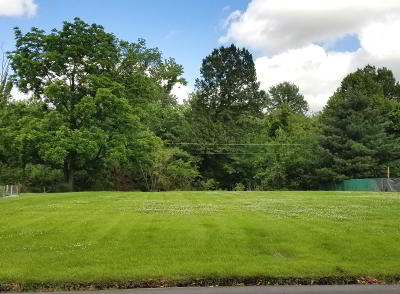 Marion Residential Lots & Land For Sale: 701 S Hadfield Street