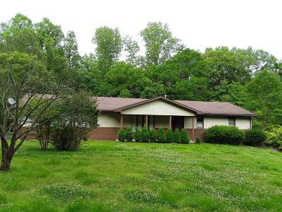 Cobden Single Family Home For Sale: 160 Short Road
