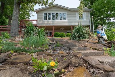 Williamson County Single Family Home Active Contingent: 12669 N Egypt Shore Drive
