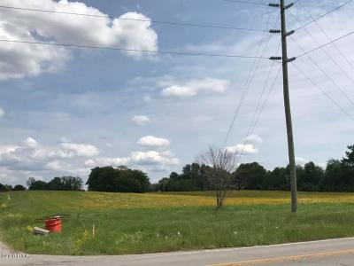 Massac County Residential Lots & Land For Sale: Il-145