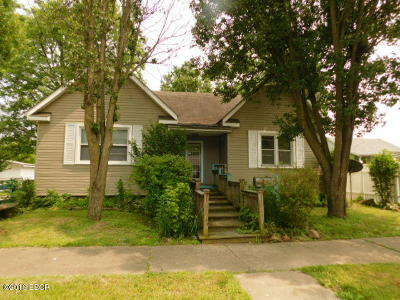 Massac County Single Family Home For Sale: 910 Catherine Street