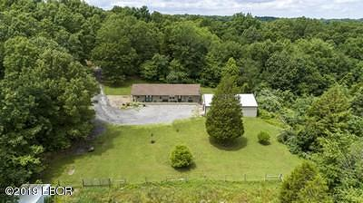 Creal Springs Single Family Home For Sale: 1440 Turner Road