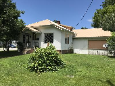 Massac County Single Family Home For Sale: 811 W 18th Street