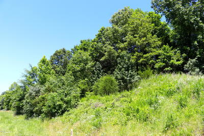 Williamson County Residential Lots & Land For Sale: 11264 Grassy Road