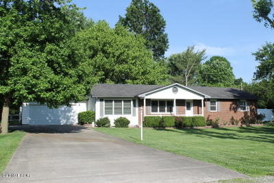 Carterville Single Family Home Active Contingent: 11492 Hurricane Road