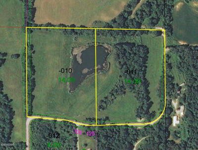 Carbondale Residential Lots & Land For Sale: 283 E Autumn Ridge Road