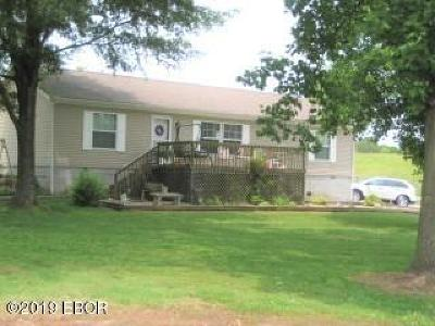 Goreville Single Family Home For Sale: 320 N Old Marion Road