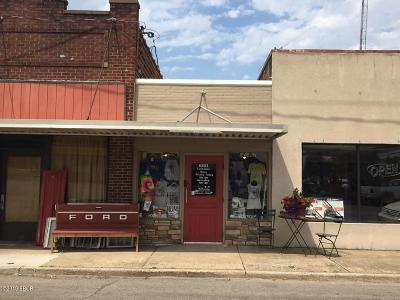 Massac County Commercial For Sale: 104 W 10th Street