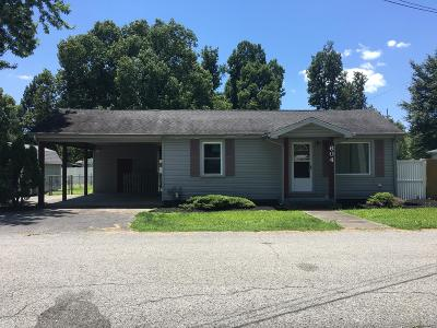 Massac County Single Family Home For Sale: 604 E 18th Street