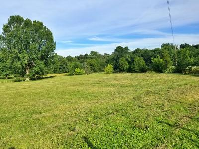 Massac County Residential Lots & Land For Sale: Crim Road