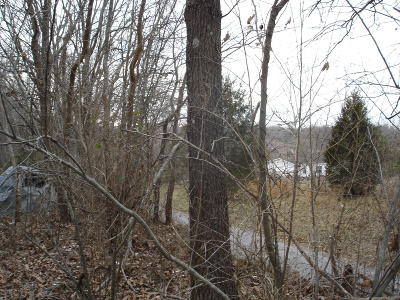 Creal Springs Residential Lots & Land For Sale: Stone Fort Rd