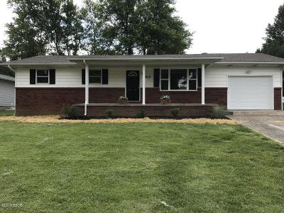 Carterville Single Family Home For Sale: 915 Valley Drive