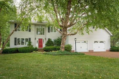 Single Family Home Active Contingent: 614 Saluki Drive
