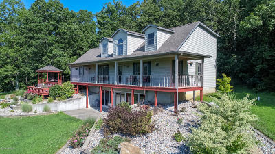 Goreville Single Family Home For Sale: 1870 N Lick Creek Road