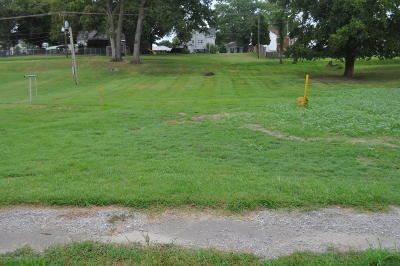 Hamilton County Residential Lots & Land For Sale: 604 S Jackson Street