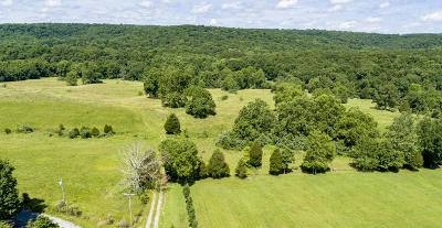Pope County Residential Lots & Land For Sale: Henry Hicks Road