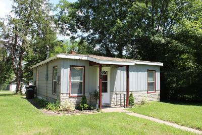 Carbondale Single Family Home For Sale: 703 N James Street