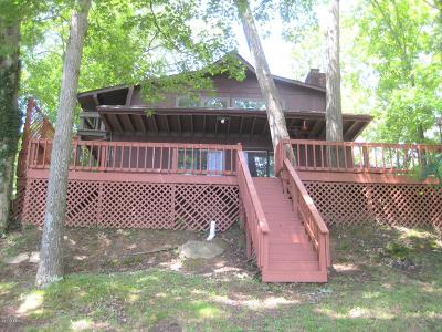 Goreville Single Family Home For Sale: 265 S Lakeshore Drive