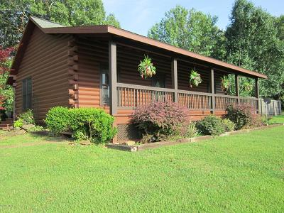 Massac County Single Family Home For Sale: 3584 Mill Springs Road