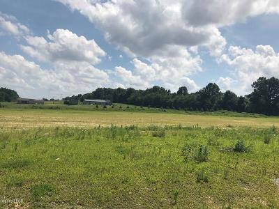 Carbondale Residential Lots & Land For Sale: 855 Forever Ln