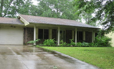 Williamson County Single Family Home For Sale: 1323 Ritchey Drive