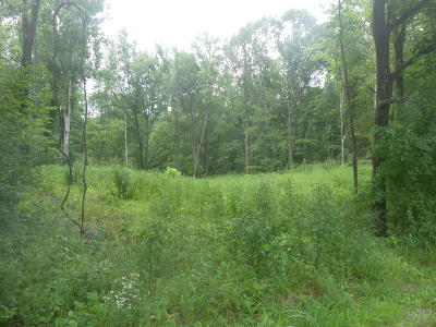 Carbondale Residential Lots & Land For Sale: Grassy Road