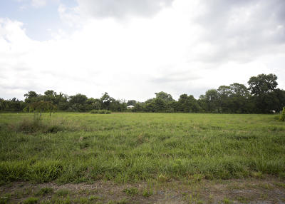 Marion Residential Lots & Land For Sale: [lot 7] Cypress Grove Place