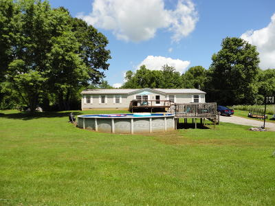 Goreville Single Family Home Active Contingent: 9222 Montgomery Lane