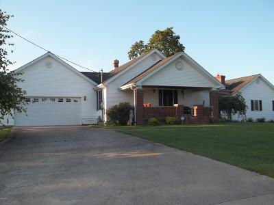 Hardin County Single Family Home For Sale: 385 Il Rt 146 E