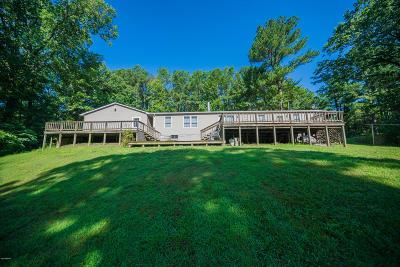 Murphysboro Single Family Home For Sale: 2 Carlock Road