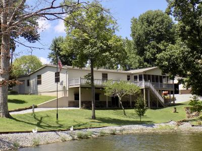 Creal Springs Single Family Home For Sale: 45 Blue Haven Point
