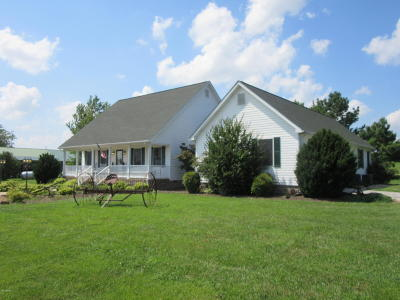 Massac County Single Family Home For Sale: 6789 Powers Church Road