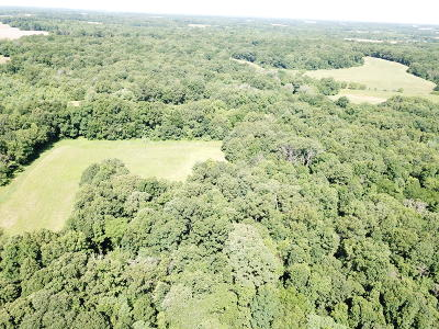 Hamilton County Residential Lots & Land For Sale: E County Road 700 Road