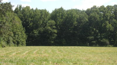 Residential Lots & Land For Sale: Us 45 So