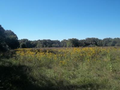 Benton Residential Lots & Land For Sale: 1000 Block S Pope Street