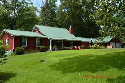 Goreville Single Family Home For Sale: 1685 Pulleys Mill Road