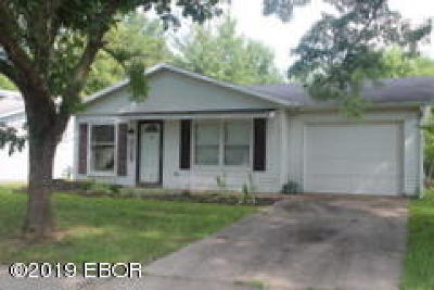 Carbondale Single Family Home For Sale: 2108 W Partridge Lane