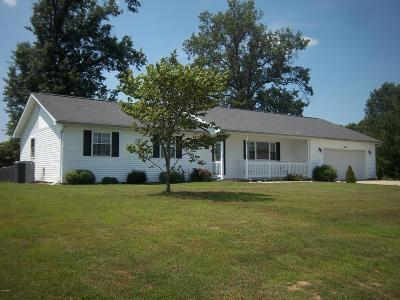 Johnston City Single Family Home For Sale: 1304 Hazel Lane