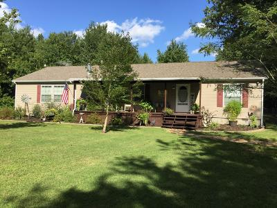 Johnston City Single Family Home For Sale: 9654 Illinois Steel Road